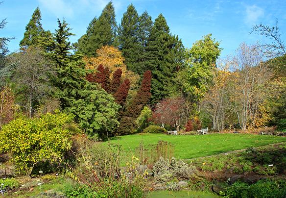 Berkeley Botanic Garden