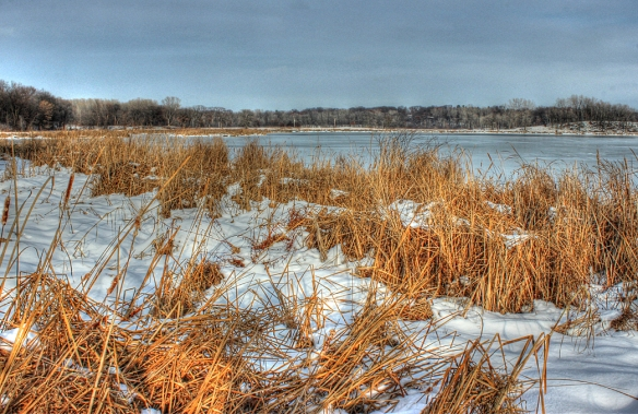 Snail Lake marsh in winter