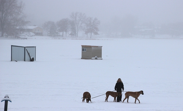 Another brave soul ventures on onto the ice to walk her three dogs.