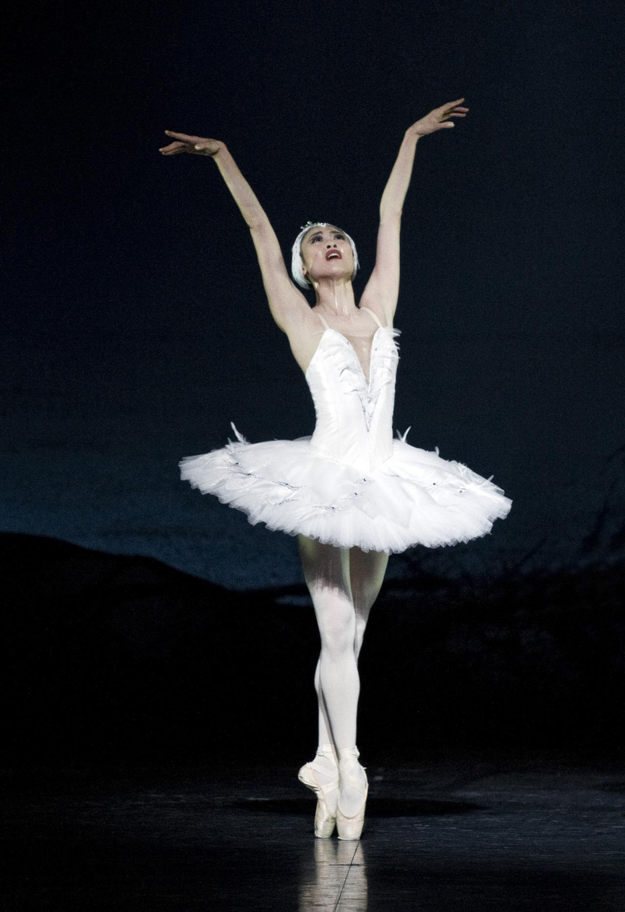 ballet poses | Back Yard Biology
