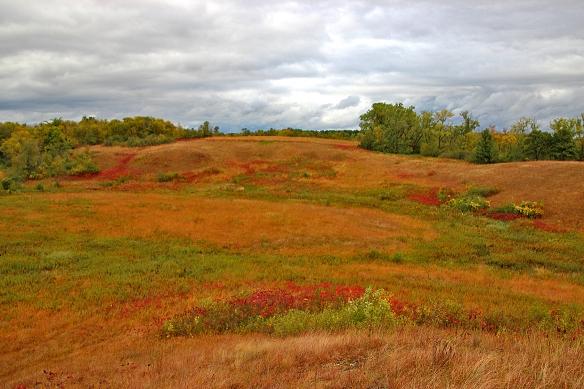 Lost Valley Prairie SNA, Hastings, MN