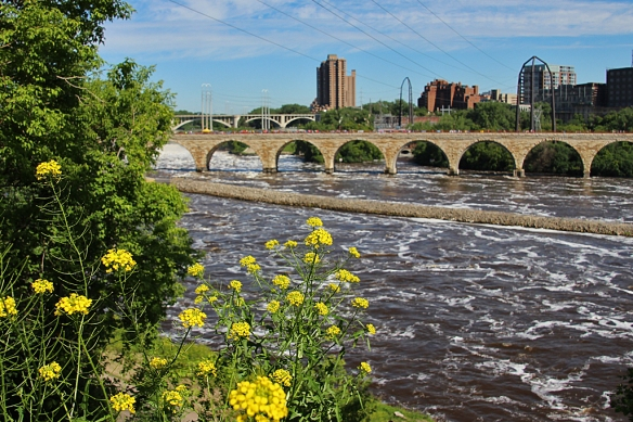 St. Anthony falls in Minneapolis is just barely visible behind the Stone Arch bridge (one of the original bridges over the Mississippi).