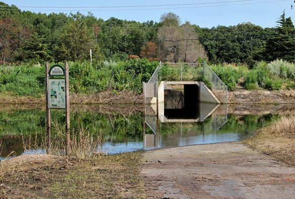 flooded bike path