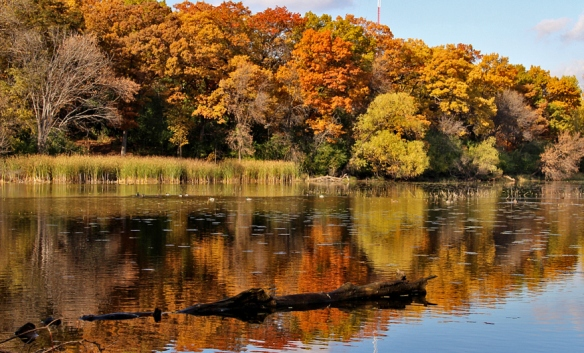 Minnesota fall color-lake reflection