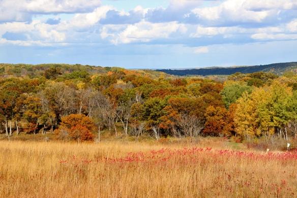 wm o'brien-state-park-fall color