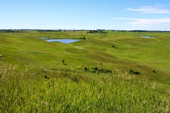 glacial lakes state park, MN