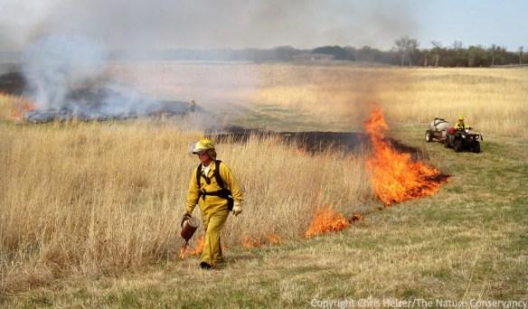 Derr sandhills prairie - prescribed fire.  March 2012