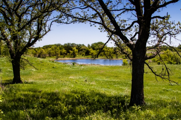 prairie pothole lake