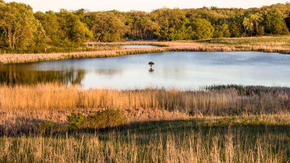 prairie pothole lakes-sunset