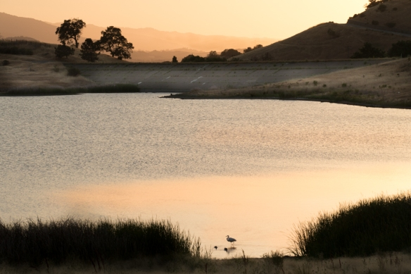 Sunset at Calero Park dam