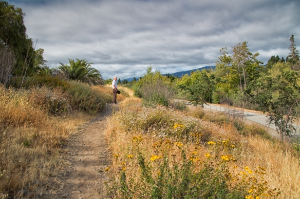campbell creek trail-