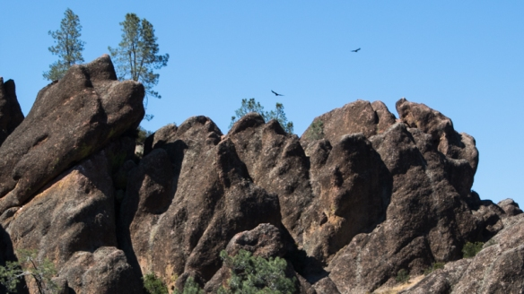 old lava flow at Pinnacles NP