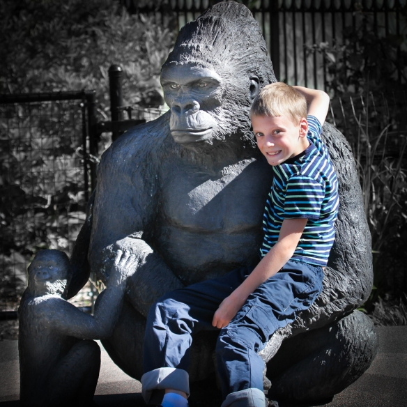 gorilla statue and grandson