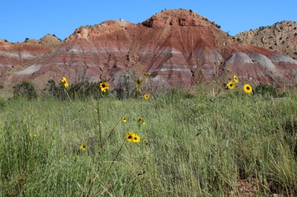 Red rocks of the Chinle formation near Abiquiu