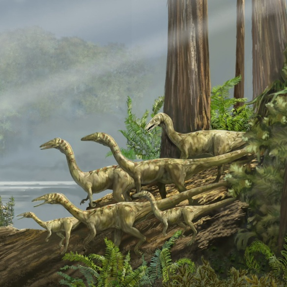 coelophysis dinosaurs from the Triassic period