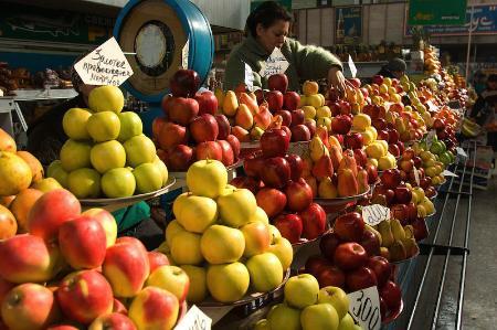 apple harvest-Kazakhstan