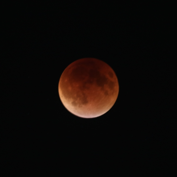 Almost complete lunar eclipse -- as full as I saw it in east-central Minnesota