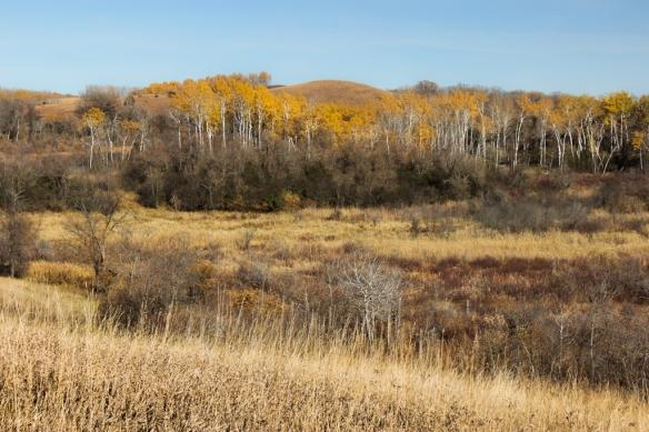 Ordway Prairie, MN