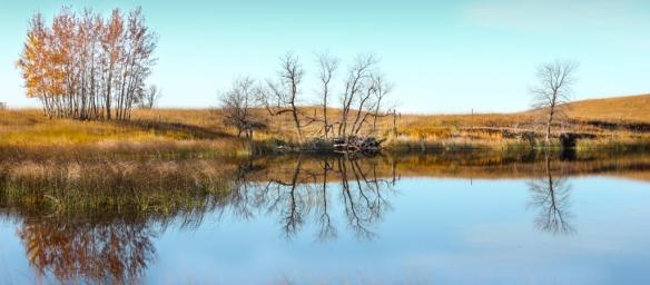 sheepberry-fen-prairie pothole