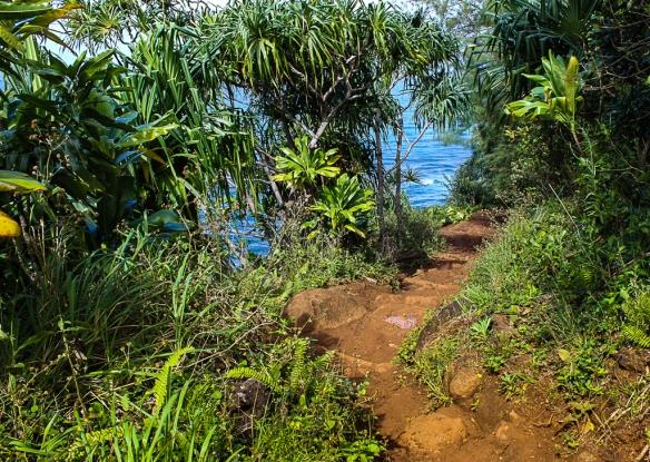 hanalei-kauai north shore
