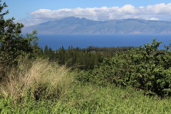 Kapalua golf course-Maui