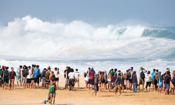 oahu surf-Feb 2016, Liz Barnery -the Guardian