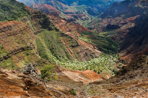 waimea canyon-