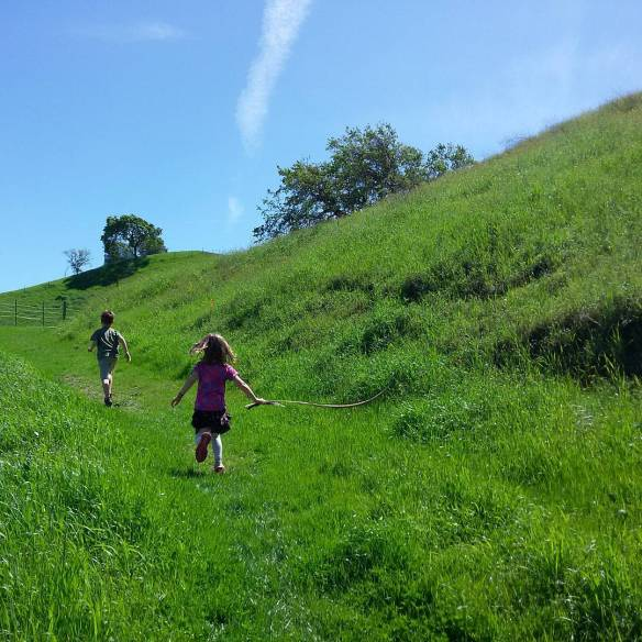 green hills-spring in California