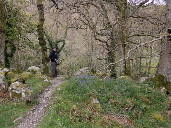 You enter the walking path to Aber Falls through a kissing gate