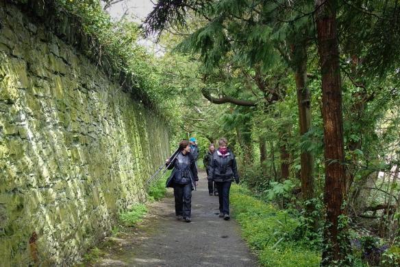 Aberogwen nature preserve