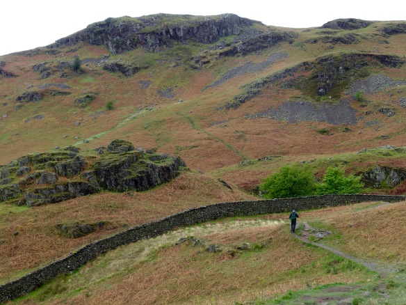 Loughrigg fell above Ambleside, Lake District