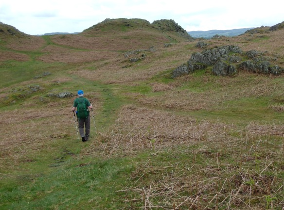 Loughrigg fell above Ambleside