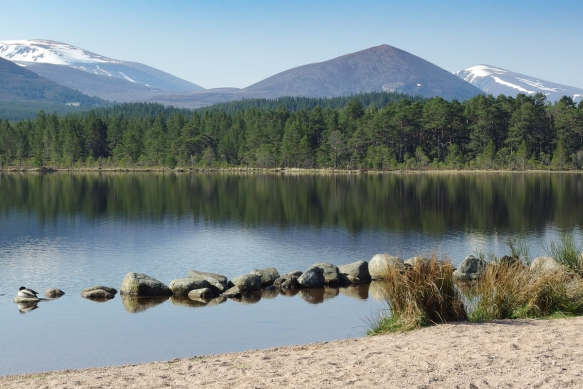 Loch Morlich near Grantown-on-Spey lies in the heart of a Scots Pine forest with the snow--capped Cairngorm mountains in the distance.