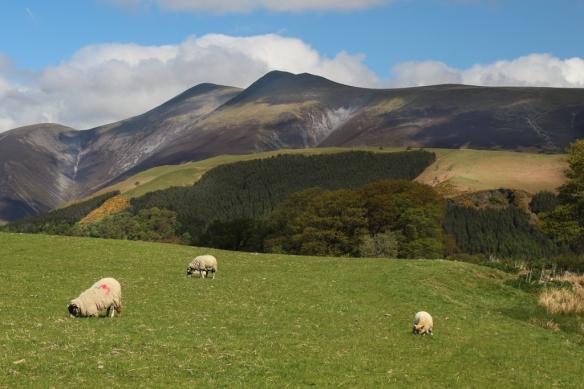 Hills around Ambleside, Lake District