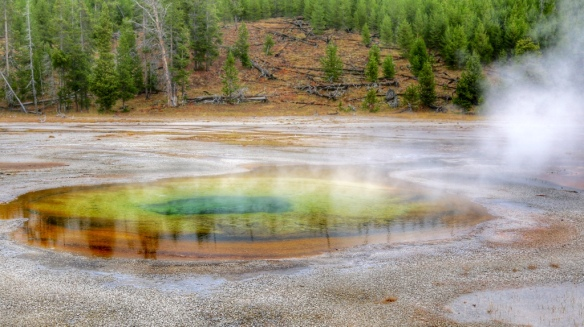 Yellowstone hot spring