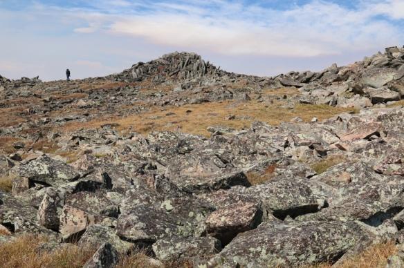 Top of Beartooth Pass