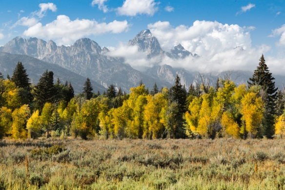 Grand Tetons-in-fall