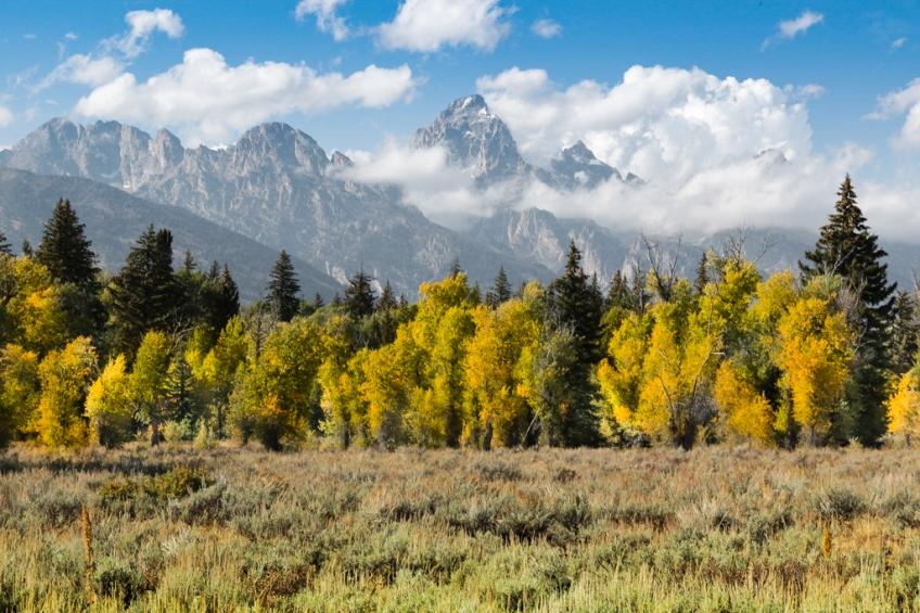 Grand Tetons-in-fall