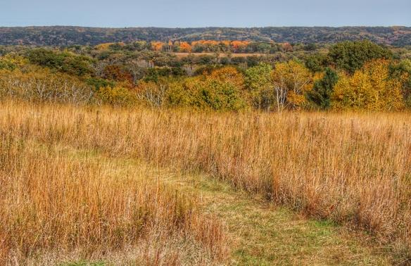 fall-prairie-wm-obrien-park-