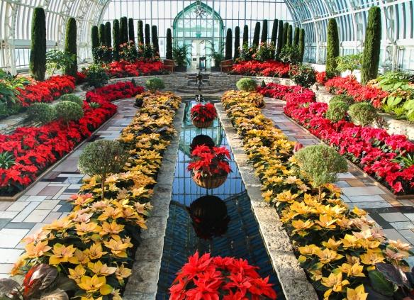 Como Park Conservatory sunken garden
