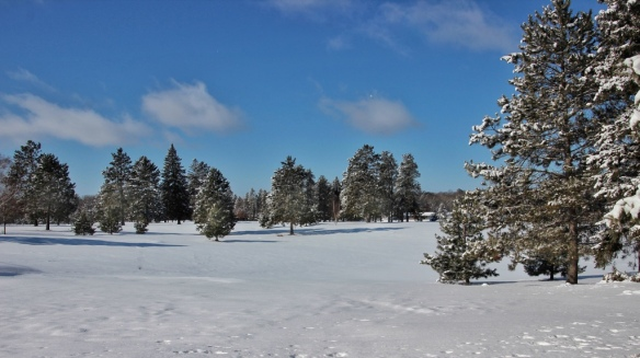 New snow, breezy point, MN