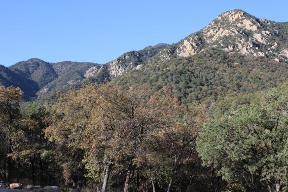 Madeira Canyon
