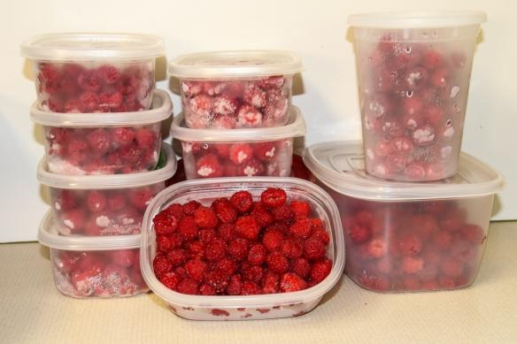 raspberries-
