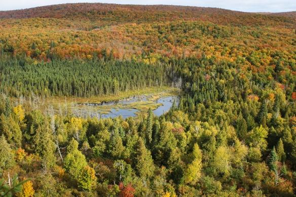 Lake Superior Oberg Mt-fall 2017 (6)