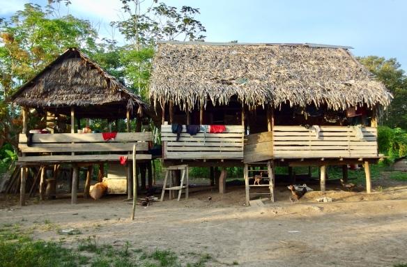 River house, Amazon basin, Peru
