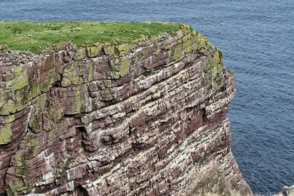 Handa Island seacliffs, near Scourie, Scotland