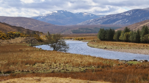 Near Ben Hope, Northern Scotland