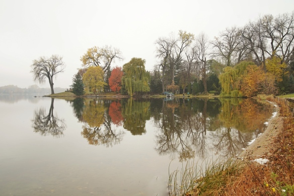 Fall color reflection, MN