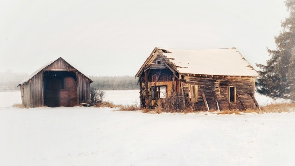 Abandoned homestead, Meadowlands, MN