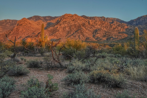 Catalina Mountains, Tucson, AZ